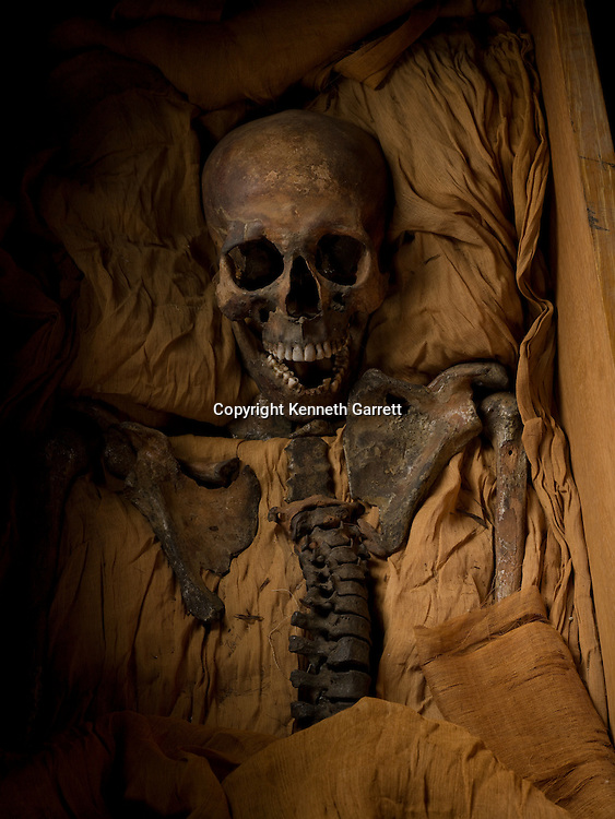 Tut DNA. mm7864, Akhenaten, Mummy, Egypt, New Kingdom, Amarna, 18th dynasty