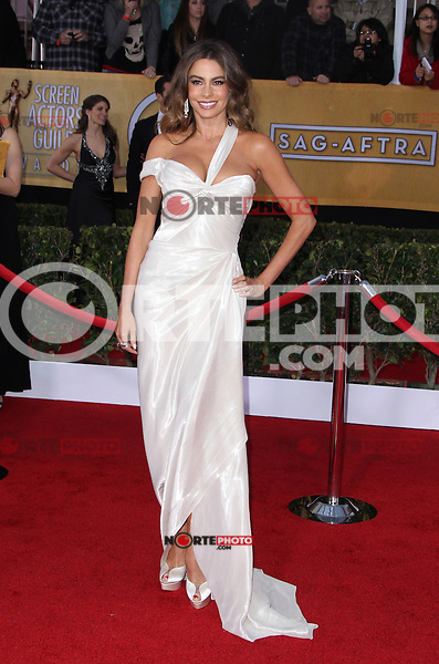 LOS ANGELES, CA - JANUARY 27: Sofia Vergara at The 19th Annual Screen Actors Guild Awards at the Los Angeles Shrine Exposition Center in Los Angeles, California. January 27, 2013. Credit: MediaPunch Inc.