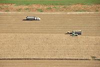Harvest.  Northern Colorado, near Windsor. Oct 2009