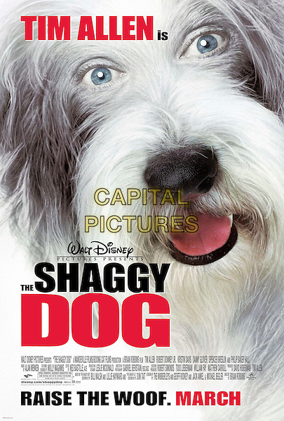 POSTER.in The Shaggy Dog.*Editorial Use Only*.www.capitalpictures.com.sales@capitalpictures.com.Supplied by Capital Pictures.