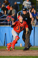Auburn Doubledays catcher Austin Chubb #25 looks for a foul pop up in front of umpire Mike Provine during a game against the Batavia Muckdogs on June 18, 2013 at Dwyer Stadium in Batavia, New York.  Batavia defeated Auburn 10-2.  (Mike Janes/Four Seam Images)