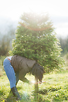 Christmas tree time at Carnation Tree Farm in Seattle, Washington on Sunday, Nov. 28, 2010.