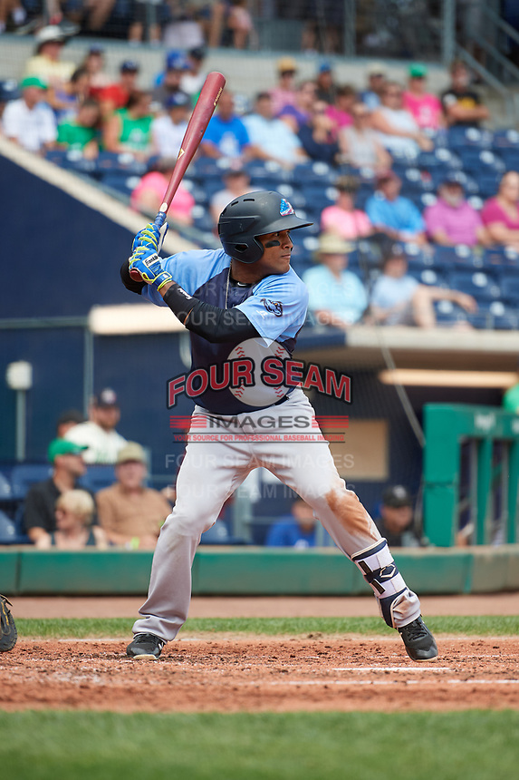 Trenton Thunder shortstop Wendell Rijo (12) at bat during a game against the Hartford Yard Goats on August 26, 2018 at Dunkin' Donuts Park in Hartford, Connecticut.  Trenton defeated Hartford 8-3.  (Mike Janes/Four Seam Images)