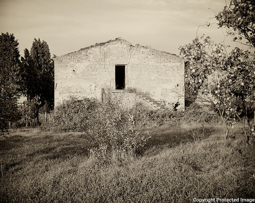 Abandoned houses in Tuscany are often bought to make a villa for tourists.  This property once had a fruit orchard (pears) growing on it.
