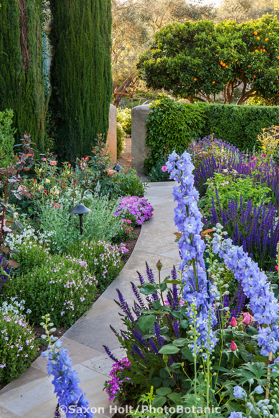 Stone pathway through perennial border in California garden; Magowan Garden