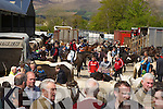 the Milltown horse fair on Sunday