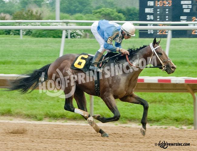 Sharp Harbour winning at Delaware Park on 5/20/13