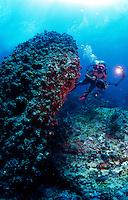 """Congo Rock"" off St John, US Virgin Islands"