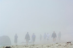 People walking on sand in fog at Pfeiffer Beach, Big Sur Coast, Monterey County, California