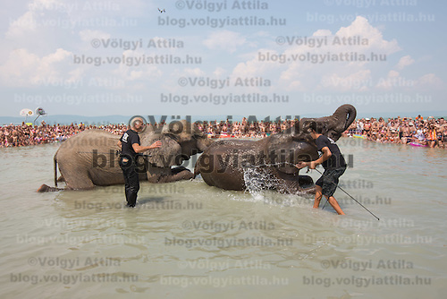 Rene Caselly (L) and Rene Caselly Jr. (R) of Germany splash water on circus elephants of the Caselly Family as they take a bath in lake Balaton in promotion of the Circus Night event at Balatonlelle (about 140 km South-West of capital city Budapest), Hungary on July 18, 2015. ATTILA VOLGYI