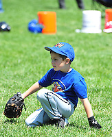 PNLL T-Ball Rockhounds Action 2015. (Photo by AGP Photography)