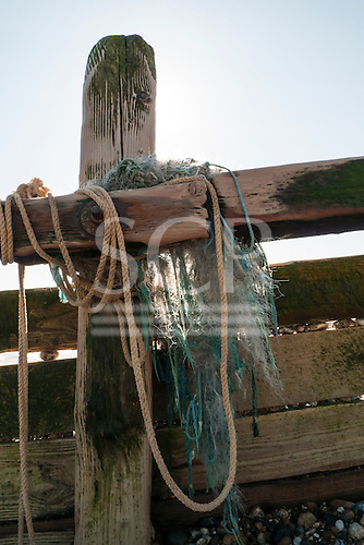 Hastings, England. Detail of wooden groyne sea defences, with ropes.
