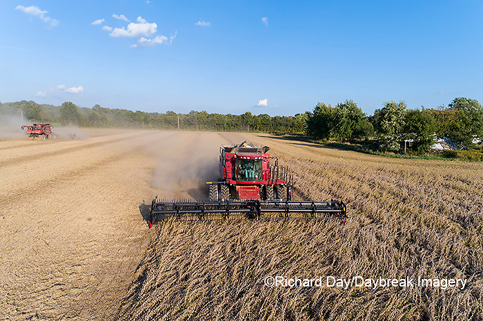 63801-13413 Harvesting soybeans in fall-aerial  Marion Co. IL