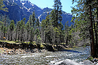 Yosemite National Park, California, USA, waterfall, parkland, 201304181584<br /> <br /> Copyright Image from Victor Patterson, 54 Dorchester Park, Belfast, UK, BT9 6RJ<br /> <br /> Tel: +44 28 9066 1296<br /> Mob: +44 7802 353836<br /> Voicemail +44 20 8816 7153<br /> Skype: victorpattersonbelfast<br /> Email: victorpatterson@me.com<br /> Email: victorpatterson@ireland.com (back-up)<br /> <br /> IMPORTANT: If you wish to use this image or any other of my images please go to www.victorpatterson.com and click on the Terms &amp; Conditions. Then contact me by email or phone with the reference number(s) of the image(s) concerned.