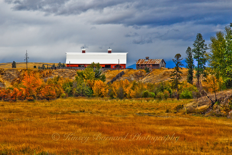 Old red barn and out building on a stormy, cloudy afternoon in the Tobacco Valley.