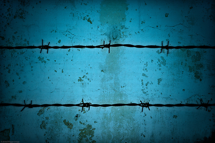 Barbed wire fence