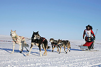 Tuesday March 13, 2007   ----   Lance Mackey, the 2007 Iditarod champion on the beach about 8 miles before the Nome finish line.