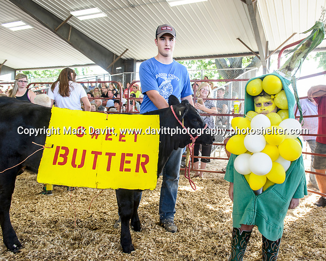 Wade Ruble of Carlisle dressed as an ear of sweet corn his calf as a stick of butter during the Bucket Calf event during the Warren County Fair.