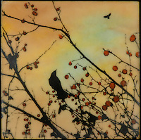 Alone yet together - crow in branch with berries photo transfer over encaustic painting. SOLD
