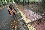 Foto: VidiPhoto<br /> <br /> DOORWERTH &ndash; Langs de Van der Molenallee tussen Doorwerth en Oosterbeek wordt op dit moment de laatste hand gelegd aan de aanleg van het meest duurzame fietspad van Nederland. De bio based (groene) betonplaten met rammelstroken en anti-slipprofiel, zijn vermengd met olifantsgras (miscanthus) dat in de agrarische sector ook wel gebruikt wordt als brandstof of toegepast als dakbedekking. De miscanthus voor de fietspadplaten wordt geoogst bij Schiphol, waar het harde gras wordt gebruikt om ganzen te weren. Miscanthus in de betonnen rijplaten van het fietspad bespaart zo&rsquo;n 30 procent cement. De platen zijn daarmee een stuk lichter. Miscanthus heeft bovendien als eigenschap dat het CO2 opneemt. Door de toepassing in het groene beton komt de CO2 niet in het milieu. Daardoor is het nieuwe systeem 57 procent minder belastend voor het mileu dan reguliere toepassingen. De lengte van het fietspad is bijna 2 km. Uitvinder is Bio Bound uit Cruqius in de gemeente Haarlemmermeer, die het olifantsgras ook al heeft verwerkt in straatmeubilair van beton en informatieborden. De &lsquo;biologische&rsquo; betonplaten hebben een draagkracht van 10 ton. Foto: De rand van het fietspad wordt gedroogd en afgeplakt, zodat het nieuwe asfalt van de weg straks niet aan het fietspad &lsquo;plakt&rsquo;.