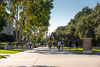 Students walk near the Academic Quad on a sunny Friday, November 9, 2018.<br /> (Photo by Marc Campos, Occidental College Photographer)