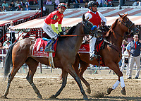 Abel Tasman (no. 1) wins the Personal Ensign Stakes (Grade 1), Aug. 25, 2018 at the Saratoga Race Course, Saratoga Springs, NY.  Ridden by  Mike Smith, and trained by Bob Baffert, Abel Tasman survived an objection and finished 1 3/4 lengths in front of Elate (No. 6).  (Bruce Dudek/Eclipse Sportswire)
