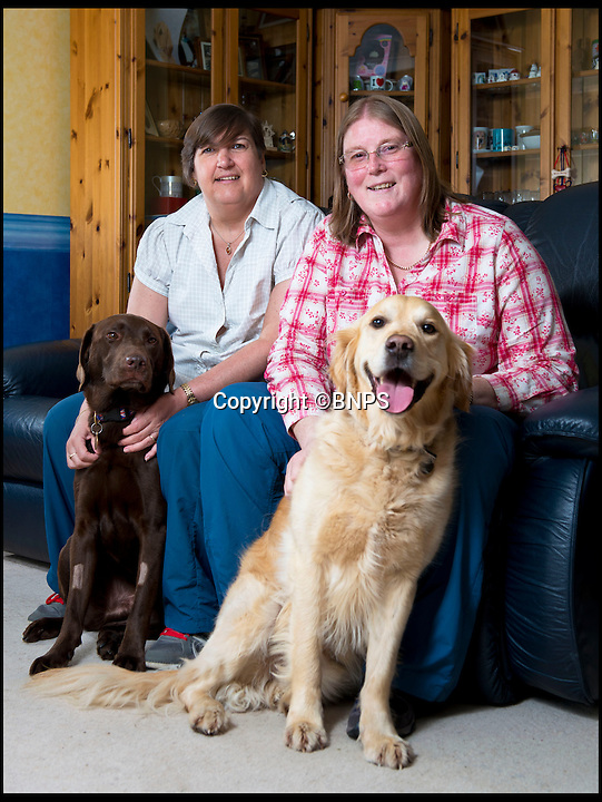 BNPS.co.uk (01202 558833)<br /> Pic: RachelAdams/BNPS<br /> <br /> ***Please use full byline***<br /> <br /> Wendy Morrell at home in Bournemouth with friend Karen Ruddlesden and dogs Udo (r) and Coco (l). <br /> <br /> A woman was startled when a huge eagle swooped into her front room and landed on a cabinet while she was watching TV.<br /> <br /> Wendy Morrell couldn't believe her eyes when the 18ins tall bird of prey flew through open patio doors and into her lounge in Poole, Dorset, yesterday.<br /> <br /> The bird, a Russian Steppe eagle, knocked over ornaments with its 4ft wings as it landed on a wooden glass cabinet before pecking at a bowl of pot pourri.<br /> <br /> Wendy and friend Karen Ruddlesden tried to tempt the eagle outside using pieces of ham but when their attempts failed they phoned a local bird of prey rescue centre.<br /> <br /> After 30 minutes of trying the eagle was eventually lured down off its makeshift perch using a dead chick.<br /> <br /> It was revealed later that the young bird was called Storm and was being trained up to ward off seagulls at a nearby landfill site.<br /> <br /> It had been reported missing by owner James Moore three days prior to turning up at Wendy's house after it broke its tethers.