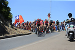 The peloton led by Lotto-Soudal pass the stunning coastline at Villasimius during Stage 3 of the 100th edition of the Giro d'Italia 2017, running 148km from Tortoli to Cagliari, Sardinia, Italy. 7th May 2017.<br /> Picture: Eoin Clarke | Cyclefile<br /> <br /> <br /> All photos usage must carry mandatory copyright credit (&copy; Cyclefile | Eoin Clarke)