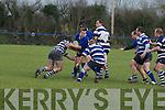 Tralee V Crosshaven Rugby..................... ....