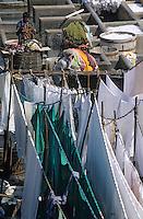 """Asie/Inde/Maharashtra/Bombay: """"Mahalakshmi Dhobi Ghaxi"""" le plus grand lavoir de Bombay"""
