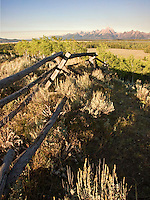 Low morning light on an old rail fence curving left to right in a high dry meadow above a lush lower meadow, with the Grand Teton Mountains on the horizon. Jackson Hole, Wyoming, August 2007.