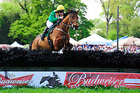 24  March, 2012:  Ross Geraghty and PULLYOURFINGEROUT clear the last to win the Budweiser Imperial Cup at Aiken.