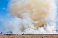 63863-02816 Prescribed Burn by IDNR Prairie Ridge State Natural Area Marion Co. IL