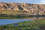 A camp set up along the Marias River on a canoe trip down to the confluence with the Missouri River at Loma, Montana