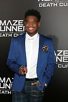 "LOS ANGELES - JAN 18:  Dexter Darden at the ""Maze Runner: The Death Cure"" Fan Screening at AMC 15 on January 18, 2018 in Century City, CA"
