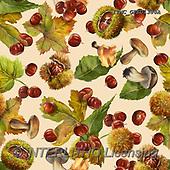 Marcello, GIFT WRAPS, GESCHENKPAPIER, PAPEL DE REGALO, paintings+++++,ITMCGPED1380A,#GP#, EVERYDAY,autumn,mushrooms