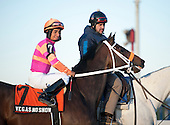 Delaware shipper Vegas No Show, owned by George and Lori Hall and trained by Kelly Breen, the connections of Belmont Stakes winner Ruler On Ice, finished fifth in the Jerome Stakes at Belmont.