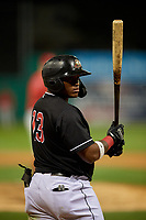 Batavia Muckdogs Albert Guaimaro (13) at bat during a NY-Penn League game against the Williamsport Crosscutters on August 26, 2019 at Dwyer Stadium in Batavia, New York.  Batavia defeated Williamsport 10-0.  (Mike Janes/Four Seam Images)