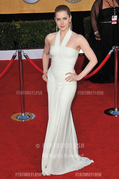 Amy Adams at the 17th Annual Screen Actors Guild Awards at the Shrine Auditorium..January 30, 2011  Los Angeles, CA.Picture: Paul Smith / Featureflash
