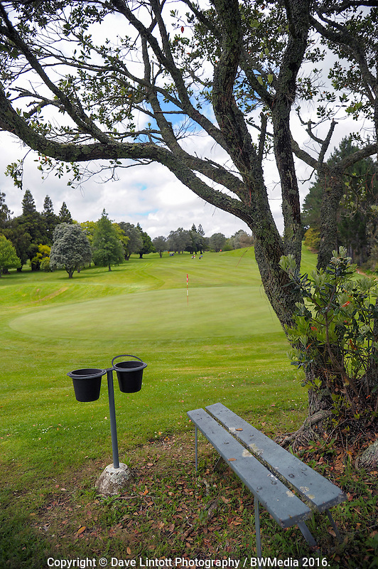 The 17th fairway. 2016 Toro Women's Interprovincial Golf Championship at Westown Golf Club in New Plymouth, New Zealand on Friday, 9 December 2016. Photo: Dave Lintott / lintottphoto.co.nz