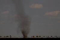Chapada Gaucha_MG, 01 de Outubro de 2007.<br /> <br /> Projeto Beira de Estrada<br /> <br /> Rota Norte e Noroeste de Minas <br /> <br /> Na foto, terra plana e quente, combinada com o vento constante, produzia varios desses redemoinhos, verdadeiros tornados.<br /> <br /> Foto: LEO DRUMOND / NITRO