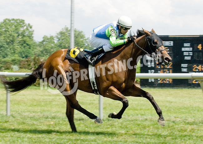 Sister Earth winning at Delaware Park on 6/25/12