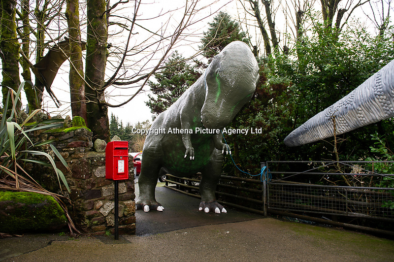 """Pictured: A general view of the Dinosaur outside of Dan Yr Ogof, The National Showcaves Centre for Wales, Abercraf, Swansea, Wales, UK<br /> A 3/4 of a tonne dinosaur is being auctioned off  in order to raise funds for JDRF, a charity that funds research into finding a cure for people with type I diabetes.<br /> The 15 ft tall (4.6mtrs) fibreglass Allosaurus has been part of the exhibition at Dan Yr Ogof, The National Showcaves Centre for Wales, for some years.<br /> The idea for the auction came from Ashford Price, chairman of the National Show Caves for Wales at Dan yr Ogof, whose son and grandson both live with type 1 diabetes. Ashford said: """"Diabetes is a difficult medical condition even for adults, but for young children it is so much harder.<br /> """"Some young children have six insulin injections every day just to stay alive. Can you imagine the parents' anguish having to put a child through this daily ritual?<br /> The dinosaur measures 24ft long (7.3mtrs) and its 8ft (2.4mtrs) at its widest point <br /> The dinosaur is being auctioned to the highest bidder in order to raise funds for JDRF, a charity that funds research into finding a cure for people with type I diabetes.<br /> To put in a bid email the charity at wales@jdrf.org.uk by the 26th of February."""
