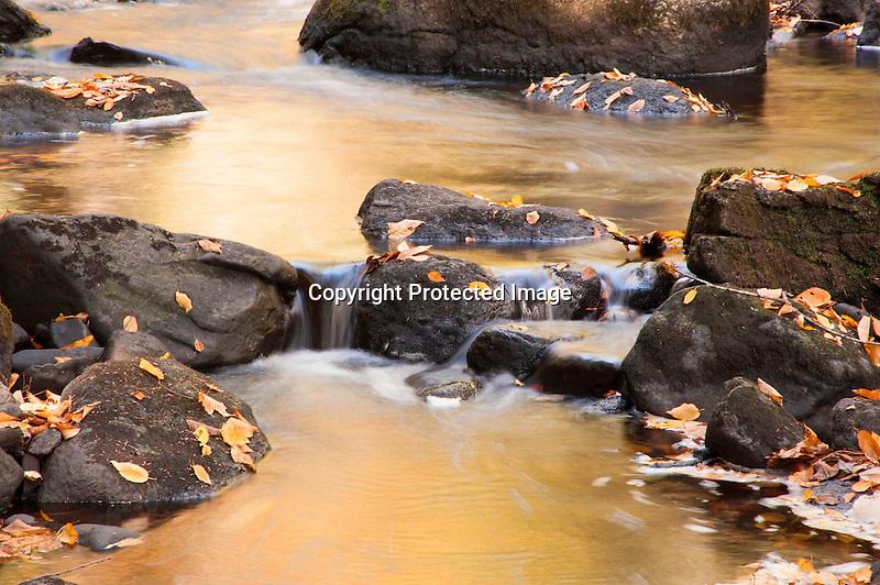 Tumbling Golden Stream