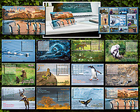 2019 Nature's Inspiration Calendar