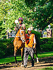 All In All The Buzz Brauninger Arabian Distaff (grade 1) at Delaware Park on 9/2/16