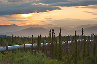 Trans Alaska oil pipeline transects the boreal forest in the Brooks Range, Arctic, Alaska.