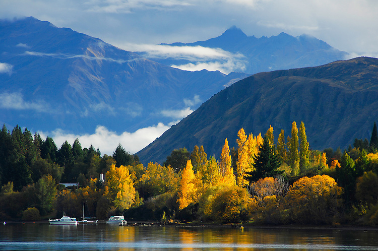 Autumn trees and reflections in Lake Wanaka, Southern Lakes, New Zealand