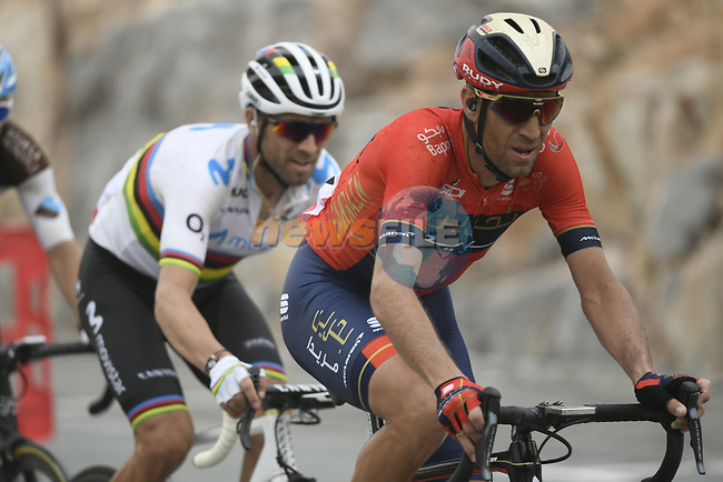 Vincenzo Nibali (ITA) Bahrain-Merida and World Champion Alejandro Valverde (ESP) Movistar Team in the mountains during Stage 6 of the 2019 UAE Tour, running 175km form Ajman to Jebel Jais, Dubai, United Arab Emirates. 1st March 2019.<br /> Picture: LaPresse/Fabio Ferrari | Cyclefile<br /> <br /> <br /> All photos usage must carry mandatory copyright credit (© Cyclefile | LaPresse/Fabio Ferrari)