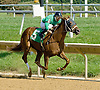 Risky Recovery winning at Delaware Park on 9/13/12